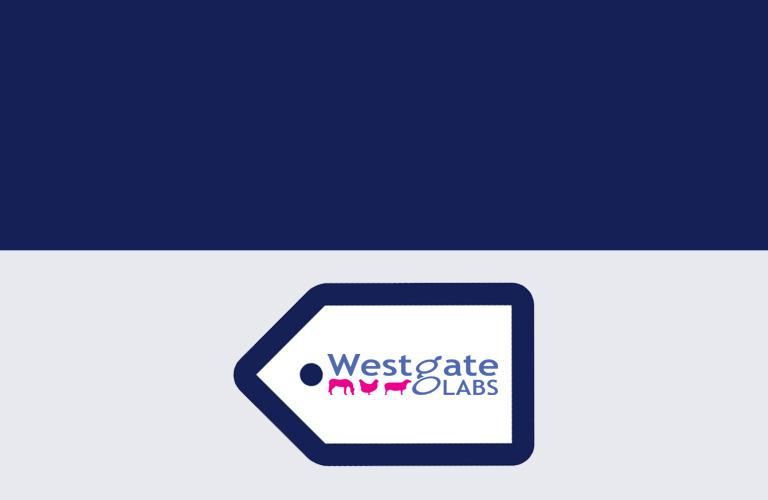 Westgate Labs