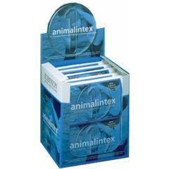 Robinsons Animalintex - Box of 10 (Equine)