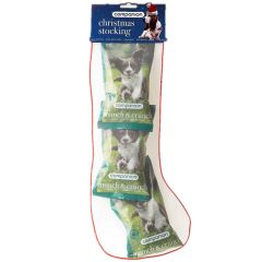 Companion Christmas Treat Stocking (Canine)
