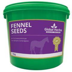 Global Herbs Fennel 1kg