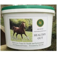 Equus Health Healthy Gut