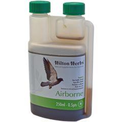 Hilton Herbs Airborne (Avian)