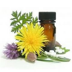 Hilton Herbs Arnica Tablets 30c