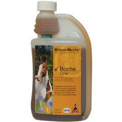 Hilton Herbs Borne One 500ml (Equine)