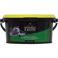Lincoln Seaweed & Biotin 1.5kg (Equine)
