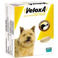 Veloxa Chewable Wormer for Dogs