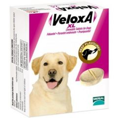 Veloxa XL Chewable Wormer for Dogs