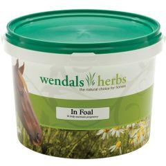 Wendals Herbs In Foal 1kg (Equine)