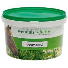 Wendals Herbs Seaweed 1kg (Equine)